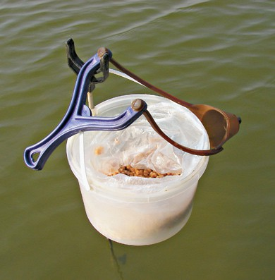 Прикормка для теплой воды.