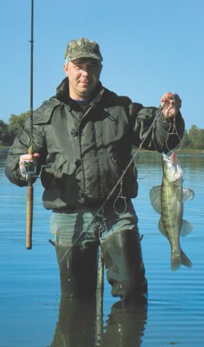 форум рыбаков центрального региона