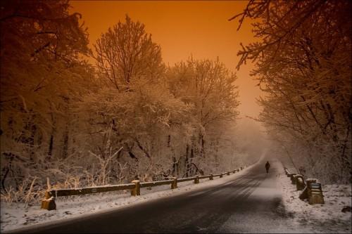 Фотограф Adam Dobrovits. (24 фото)