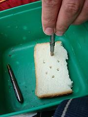 Bread punch – хлебная высечка.