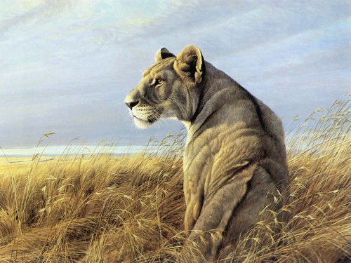 Рисованные животные. Часть 2. (25 фото)