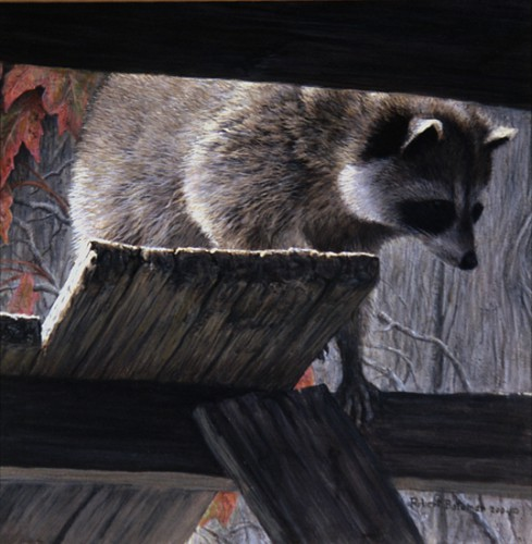 Художник - натуралист Robert Bateman. Часть 3. (50 фото)