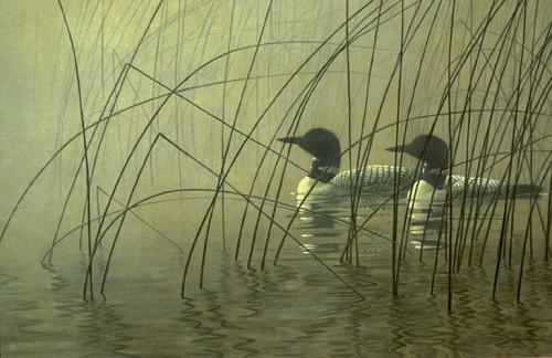 Художник - натуралист Robert Bateman. Часть 5. (40 фото)