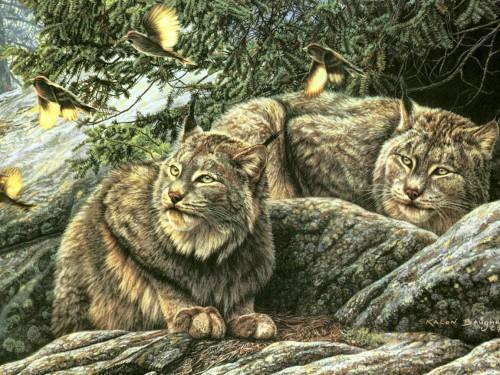 Рисованные животные. Часть 5. (30 фото)
