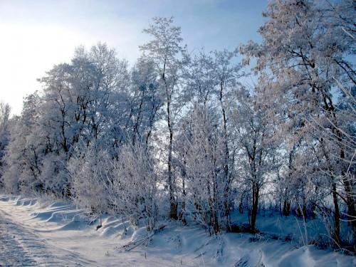 Зима - природа фото, обои природа