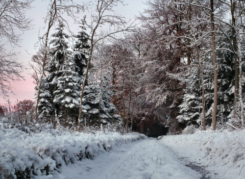 Зимние пейзажи. (55 фото)