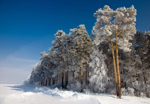 Зимние пейзажи. (25 фото)
