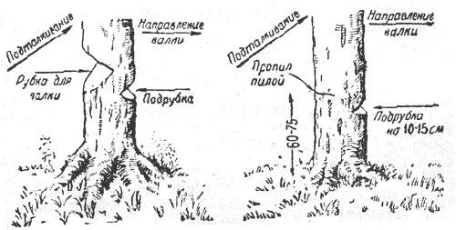 """Спутник партизана"". Поход."
