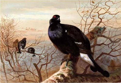 Работы художника Арчибальда Торберна (Archibald Thorburn). Часть 1. (30 фото)