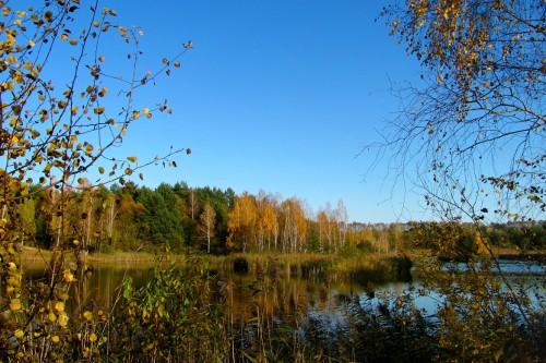 Природный календарь рыболова по месяцам. Время лова - Осень.