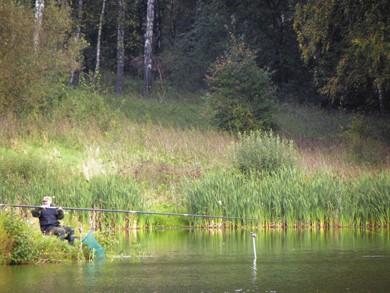 Штекер на платном пруду. Часть 2. Технология привлечения рыбы и техника ловли.