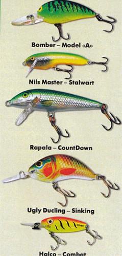 аукро рыбалка