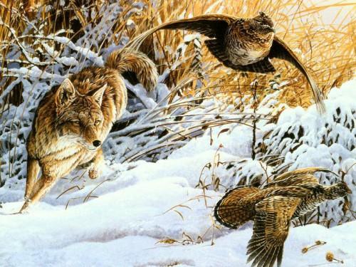 Природы животные часть 2 25 фото