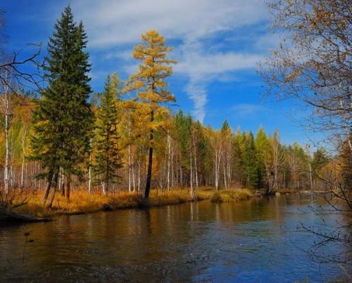 Природный календарь рыболова по месяцам. Октябрь.