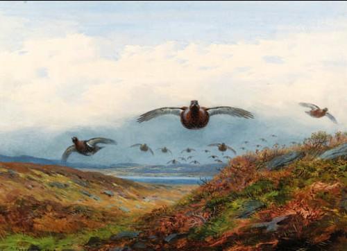 Работы художника Работы художника Archibald Thorburn. Часть 4. (30 фото)