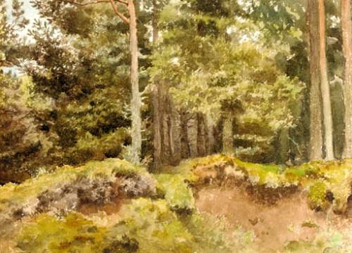Работы художника Работы художника Archibald Thorburn. Часть 7. (30 фото)