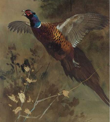 Работы художника Archibald Thorburn. Часть 9. (30 фото)