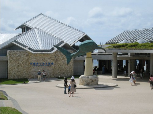 Аквариум Okinawa Churaumi Aquarium  (Япония). (40 фото + 2 видео).