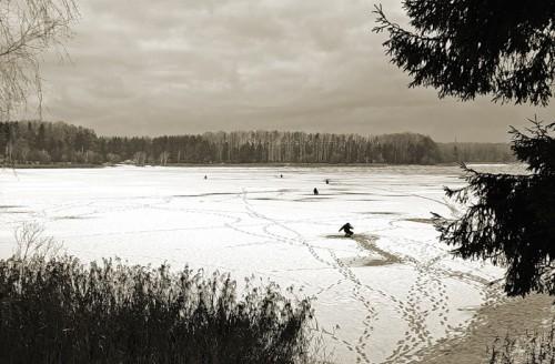 Вести с водоемов от Алексея Ветрова. Март 2012 г.