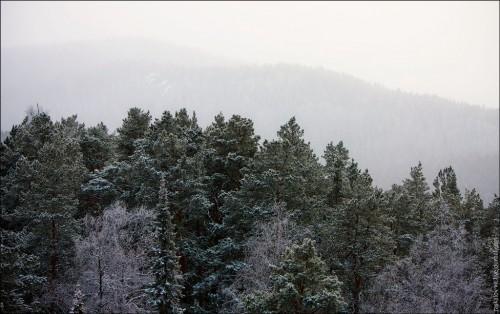 Красноярские столбы. (32 фото)