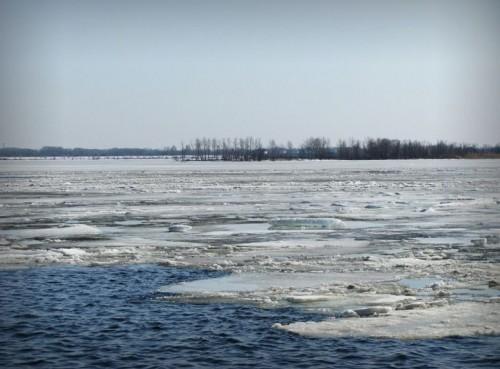 Вести с водоемов от Алексея Ветрова. Апрель 2012 г.