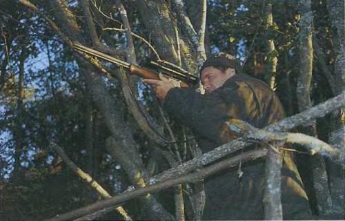 На косулю с подхода - Оружие и охота №6, 2001