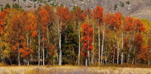 Путешествие по северу и востоку Казахстана. (33 фото)