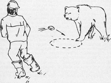 Человек и медведь: Как вести себя при встрече с опасным хищником. Часть 5.