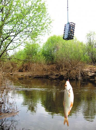 Альтернатива фидеру на малой реке.