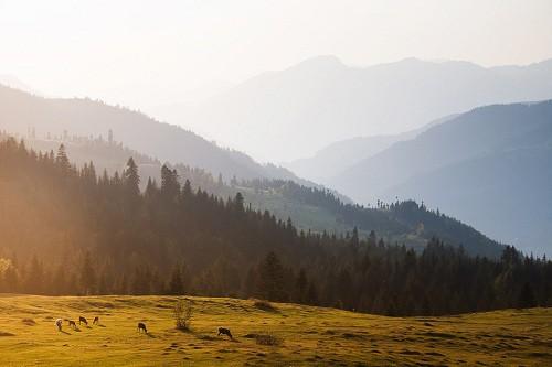 Грузия. Пейзажи. Часть 1. (30 фото)