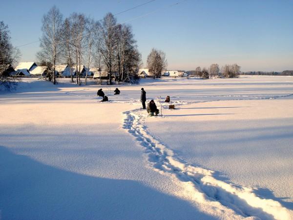 Наживки для ловли зимой. Часть 2.