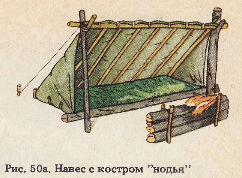 Польская гончая в России - Статьи
