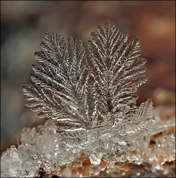 Невероятные снежинки от фотографа Андрея Осокина. Часть 2. (35 фото)