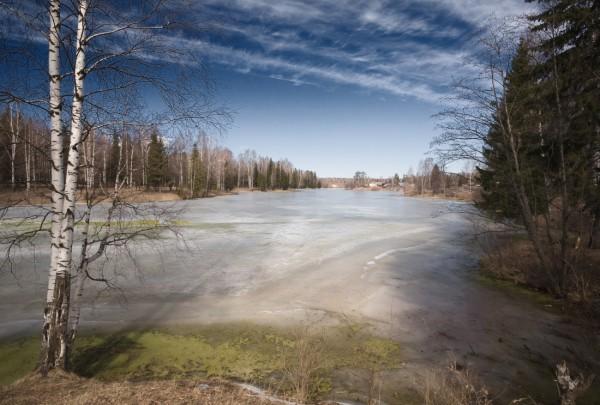 Загадки весеннего льда. Часть 2. Активно тает снег: где искать рыбу – со стороны поля или под лесным берегом?