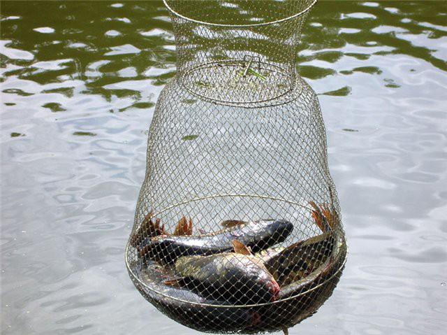 куда класть рыбу в лодке