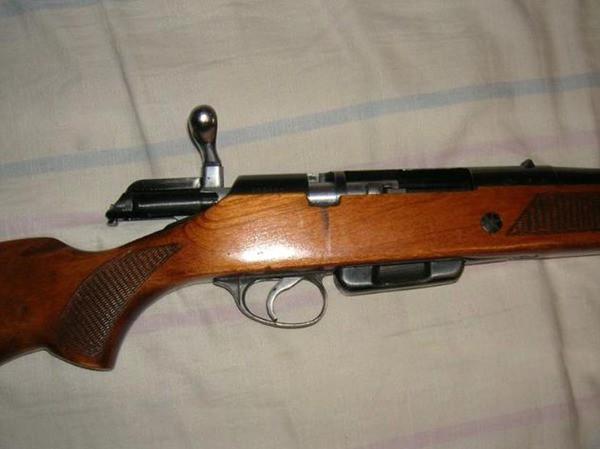 МЦ 20-01 и пуля Полева 16 калибра.