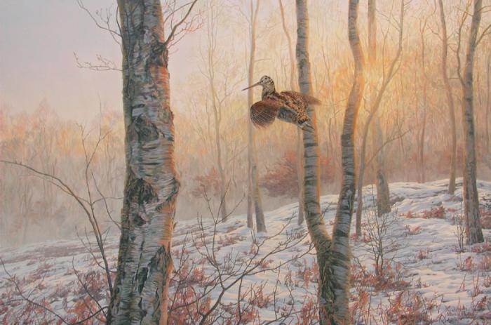Осенняя охота по вальдшнепам.
