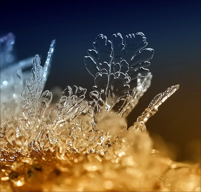 Невероятные снежинки от  фотографа Андрея Осокина. Часть 3. (35 фото)