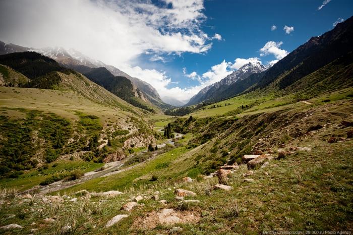 Киргизия. Ущелье Джууку или киргизско-альпийские луга. (43 фото)
