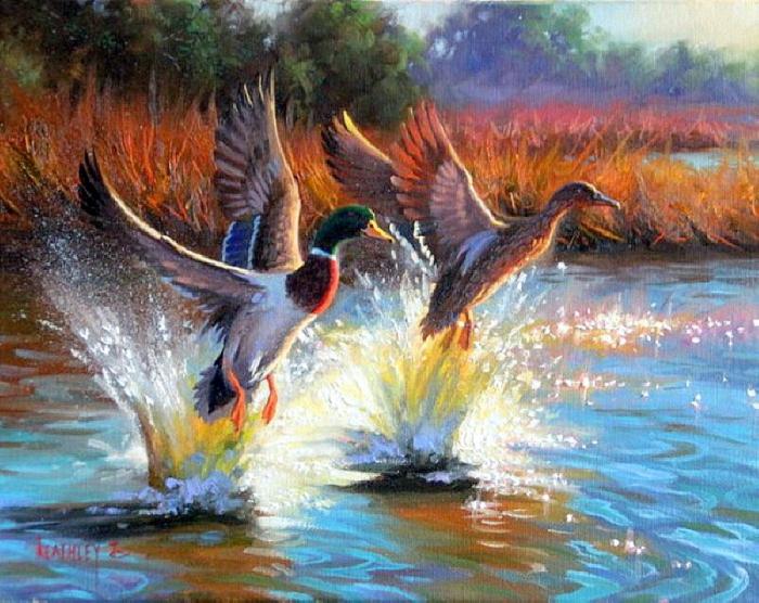 Весенняя охота по перу.