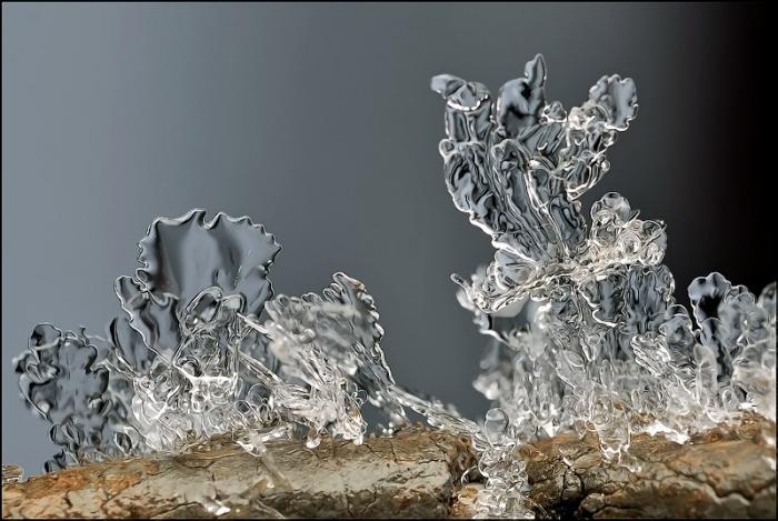 Невероятные снежинки от фотографа Андрея Осокина. Часть 4. (40 фото)