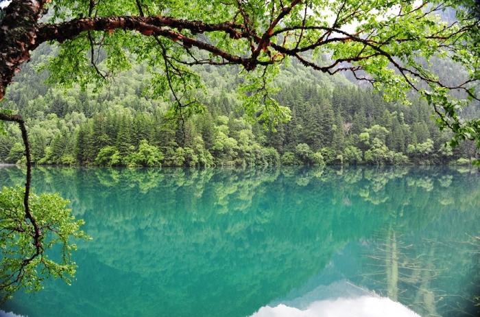 Национальный парк Цзючжайгоу. (70 фото)
