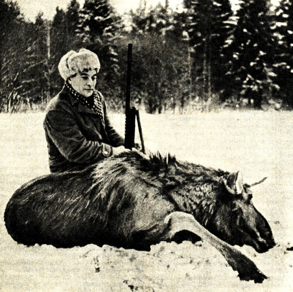 Облавная охота на лося.