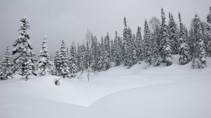Поднебесные Зубья. Зимние пейзажи. (45 фото)