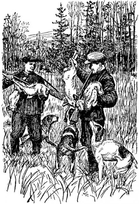 Охота на зайца. Часть 1. Охота с гончими.