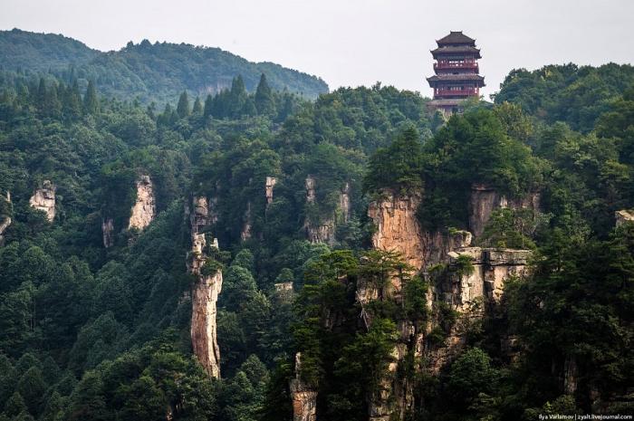 Горы Улинъюань. (51 фото)