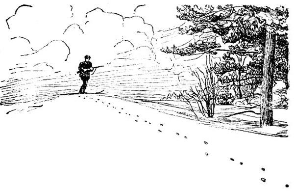 Охота на зайца. Часть 4. Охота по пороше.