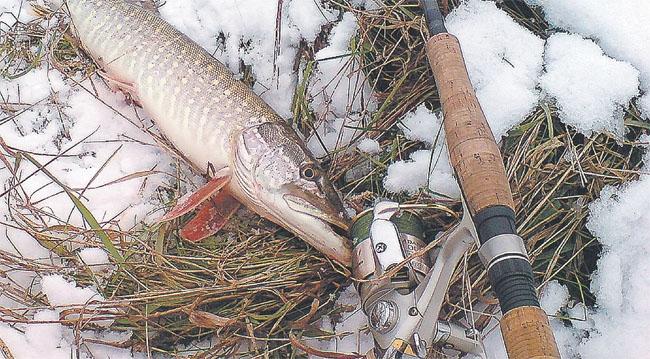 Спиннинг в начале зимы.